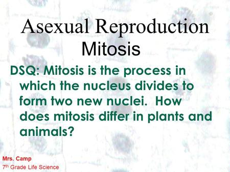 1 1 Asexual Reproduction Mitosis DSQ: Mitosis is the process in which the nucleus divides to form two new nuclei. How does mitosis differ in plants and.
