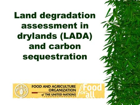 Land degradation assessment in drylands (LADA) and carbon sequestration.