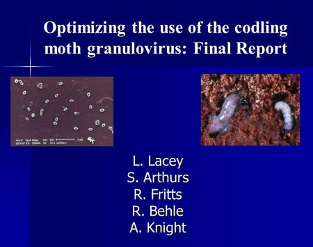 Optimizing the use of the codling moth granulovirus: Final Report L. Lacey S. Arthurs R. Fritts R. Behle A. Knight.