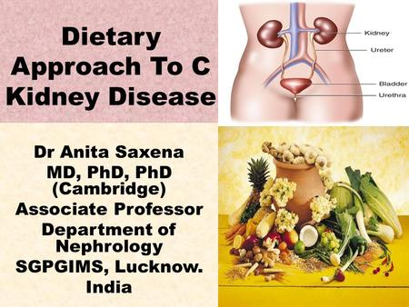Dietary Approach To C Kidney Disease Dr Anita Saxena MD, PhD, PhD (Cambridge) Associate Professor Department of Nephrology SGPGIMS, Lucknow. India.