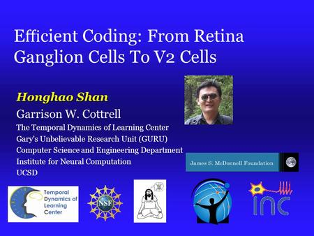 E ffi cient Coding: From Retina Ganglion Cells To V2 Cells Honghao Shan Garrison W. Cottrell The Temporal Dynamics of Learning Center Gary's Unbelievable.