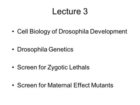 Lecture 3 Cell Biology of Drosophila Development Drosophila Genetics