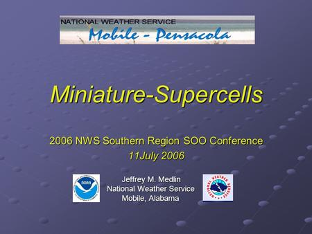 Miniature-Supercells 2006 NWS Southern Region SOO Conference 11July 2006 Jeffrey M. Medlin Jeffrey M. Medlin National Weather Service National Weather.