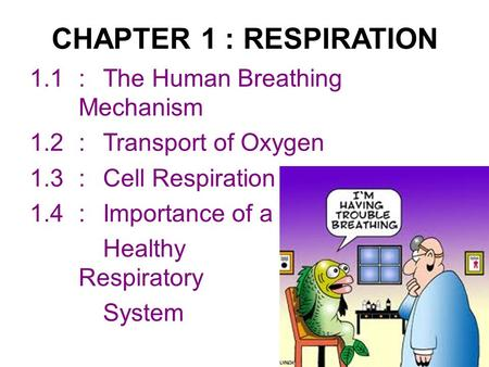 CHAPTER 1 : RESPIRATION 1.1:The Human Breathing Mechanism 1.2:Transport of Oxygen 1.3:Cell Respiration 1.4:Importance of a Healthy Respiratory System.
