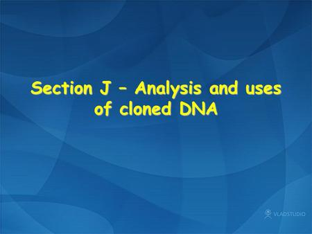 Section J – Analysis and uses of cloned DNA. Plant cell Animal cell.