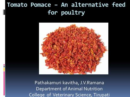 Tomato Pomace – An alternative feed for poultry Pathakamuri kavitha, J.V.Ramana Department of Animal Nutrition College of Veterinary Science, Tirupati.
