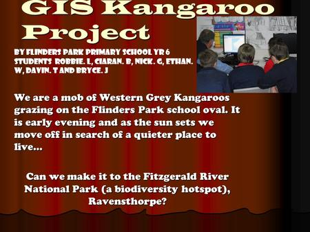 GIS Kangaroo Project We are a mob of Western Grey Kangaroos grazing on the Flinders Park school oval. It is early evening and as the sun sets we move off.