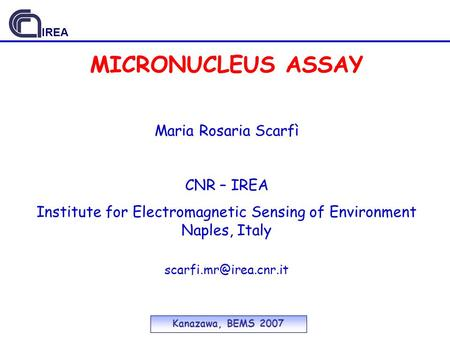 MICRONUCLEUS ASSAY Kanazawa, BEMS 2007 Maria Rosaria Scarfì CNR – IREA Institute for Electromagnetic Sensing of Environment Naples, Italy