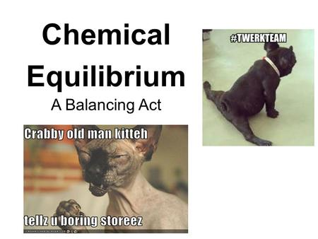 Chemical Equilibrium A Balancing Act.