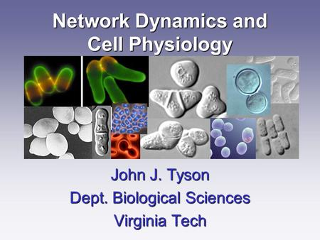 Network Dynamics and Cell Physiology John J. Tyson Dept. Biological Sciences Virginia Tech.