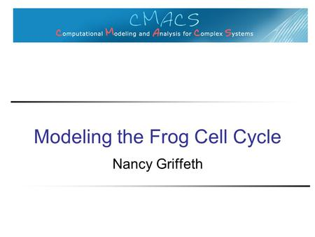 Modeling the Frog Cell Cycle Nancy Griffeth. Goals of modeling Knowledge representation Predictive understanding ◦ Different stimulation conditions ◦