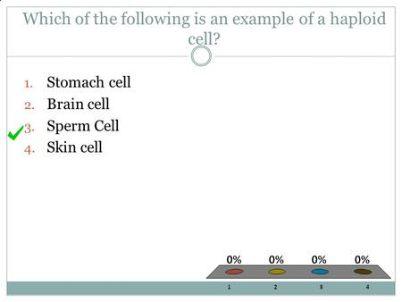 Which of the following is an example of a haploid cell?