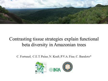 Contrasting tissue strategies explain functional beta diversity in Amazonian trees C. Fortunel, C.E.T. Paine, N. Kraft, P.V.A. Fine, C. Baraloto*