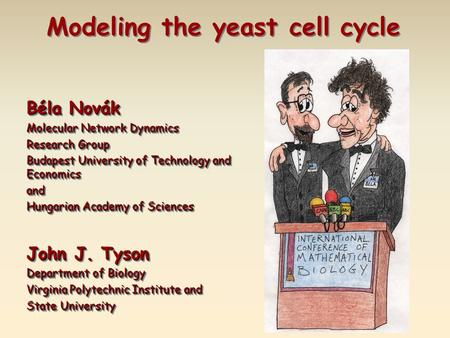 Béla Novák Molecular Network Dynamics Research Group Budapest University of Technology and Economics and Hungarian Academy of Sciences John J. Tyson Department.