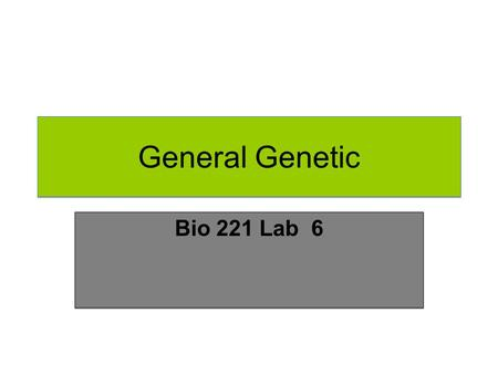 General Genetic Bio 221 Lab 6. Law of Independent Assortment (The Second Law) The Law of Independent Assortment, also known as Inheritance Law, states.
