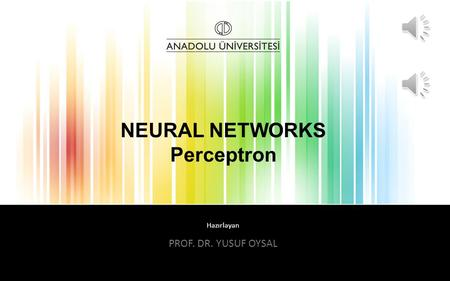 NEURAL NETWORKS Perceptron
