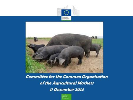 Committee for the Common Organisation of the Agricultural Markets 11 December 2014.