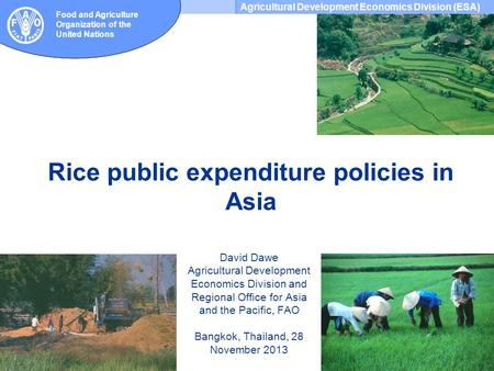 Agricultural Development Economics Division (ESA) Food and Agriculture Organization of the United Nations Rice public expenditure policies in Asia David.
