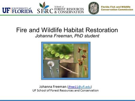 Fire and Wildlife Habitat Restoration Johanna Freeman, PhD student Johanna Freeman UF School of Forest Resources and Conservation.