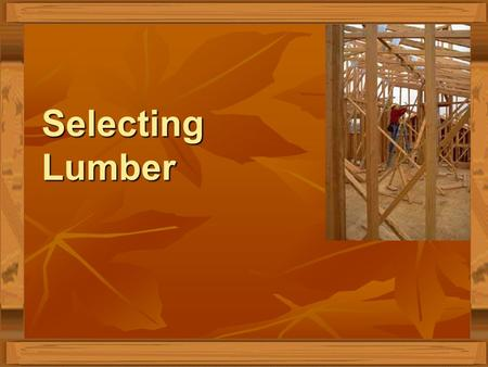 Selecting Lumber. Interest Approach Look at the piece of wood you are given. Write down as many observations as possible. Look at the piece of wood you.
