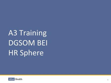 A3 Training DGSOM BEI HR Sphere