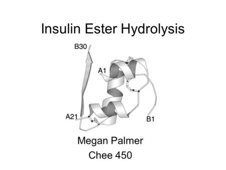Insulin Ester Hydrolysis Megan Palmer Chee 450. Conversion of Insulin Ester Following enzymatic cleavage, must de-protect Thr B30 ester into Thr B30 carboxylic.
