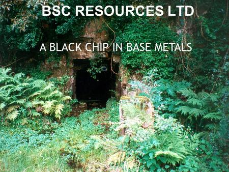 04/03/2008 African Mining 08 BSC RESOURCES LTD A BLACK CHIP IN BASE METALS.