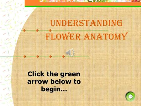 Understanding Flower Anatomy. Instruction / Help Green arrow to go forward Blue arrow to go back Red Home icon to go to the beginning of the slide show.