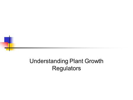 Understanding Plant Growth Regulators. Interest Approach Let's talk for a moment about yourself. What are some differences between your present body and.