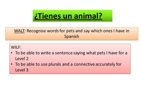 WALT: Recognise words for pets and say which ones I have in Spanish WILF: To be able to write a sentence saying what pets I have for a Level 2 To be able.