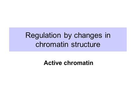 Regulation by changes in chromatin structure Active chromatin.