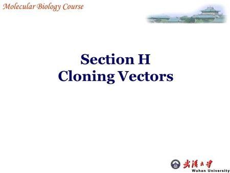 Section H Cloning Vectors