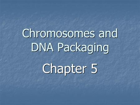Chromosomes and DNA Packaging Chapter 5. The Problem Human genome (in diploid cells) = 6 x 10 9 bp Human genome (in diploid cells) = 6 x 10 9 bp 6 x 10.