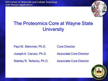 The Proteomics Core at Wayne State University Paul M. Stemmer, Ph.D.Core Director Joseph A. Caruso, Ph.D.Associate Core Director Stanley R. Terlecky, Ph.D.Associate.