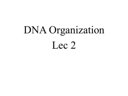 DNA Organization Lec 2. Aims The aims of this lecture is to investigate how cells organize their DNA within the cell nucleus, how is the huge amount of.
