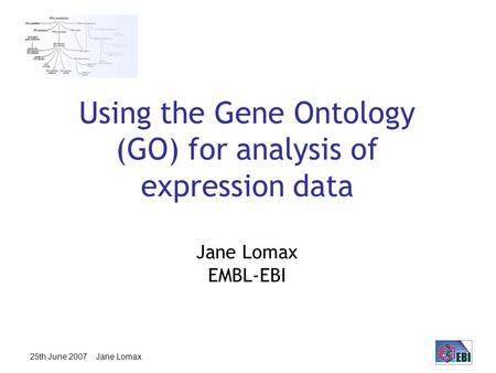 25th June 2007 Jane Lomax Using the Gene Ontology (GO) for analysis of expression data Jane Lomax EMBL-EBI.