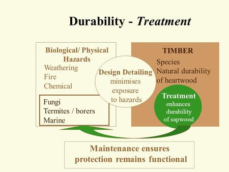 Durability - Treatment Biological/ Physical Hazards Weathering Fire Chemical TIMBER Species Natural durability of heartwood Maintenance ensures protection.