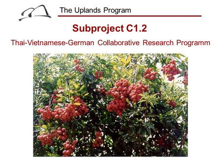 The Uplands Program Thai-Vietnamese-German Collaborative Research Programm Subproject C1.2.