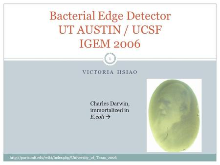 VICTORIA HSIAO 1 Bacterial Edge Detector UT AUSTIN / UCSF IGEM 2006  Charles Darwin, immortalized.