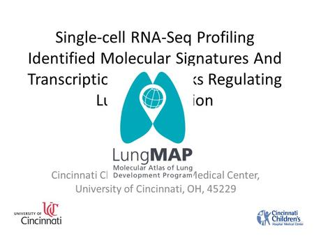 Single-cell RNA-Seq Profiling Identified Molecular Signatures And Transcriptional Networks Regulating Lung Maturation Yan Xu Sept, 8, 2014 Cincinnati Children's.