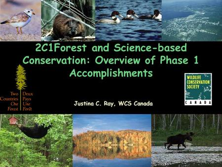 2C1Forest and Science-based Conservation: Overview of Phase 1 Accomplishments Justina C. Ray, WCS Canada.