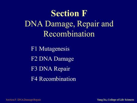 Section F DNA Damage, Repair and Recombination