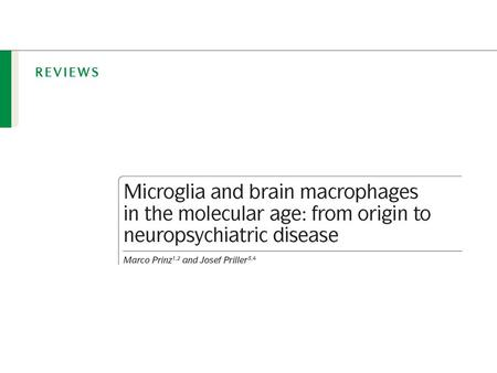 Microglia are tissue-resident macrophages in the CNS.