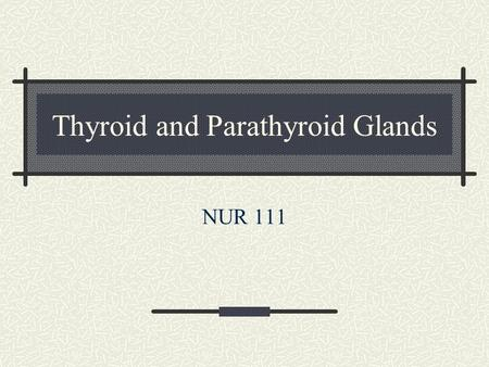 Thyroid and Parathyroid Glands NUR 111. Functions of the Thyroid Pg. 1450 Metabolic rate Regulate protein, carbs and fat metabolism Increase RBC production.
