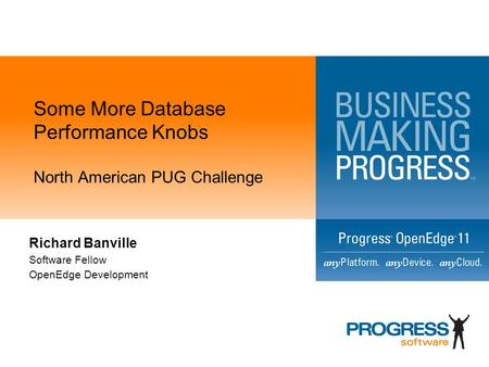 Some More Database Performance Knobs North American PUG Challenge Richard Banville Software Fellow OpenEdge Development.