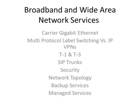 Broadband and Wide Area Network Services Carrier Gigabit Ethernet Multi Protocol Label Switching Vs. IP VPNs T-1 & T-3 SIP Trunks Security Network Topology.
