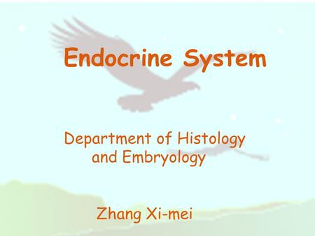 Endocrine System Department of Histology and Embryology Zhang Xi-mei.