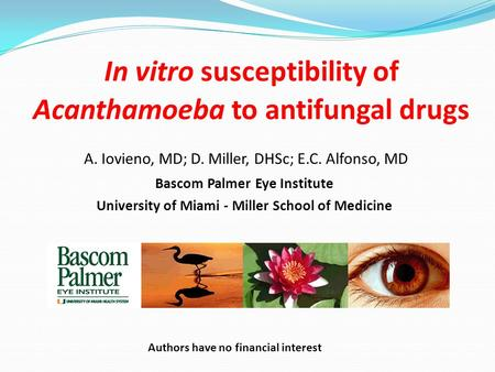 In vitro susceptibility of Acanthamoeba to antifungal drugs Bascom Palmer Eye Institute University of Miami - Miller School of Medicine A. Iovieno, MD;