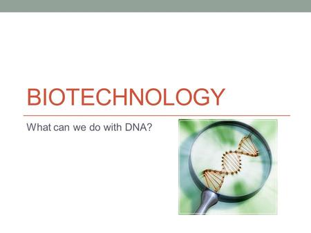BIOTECHNOLOGY What can we do with DNA?. Biotechnology Manipulation of biological organisms or their components for research and industrial purpose Usually.