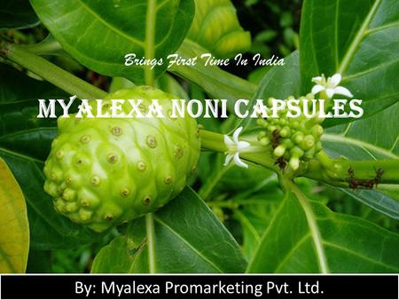Myalexa Noni Capsules Brings First Time In India